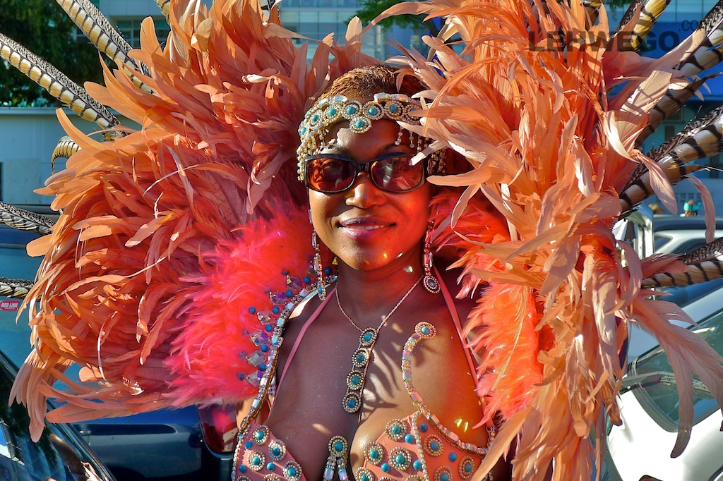 Go to Trinidad Carnival 2013.  Budget, costumes, accomodation, transportation, party tickets, etc! Prepare!