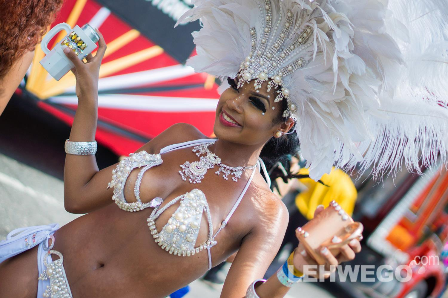 Compilation of Jamaica carnival 2013 photo albums