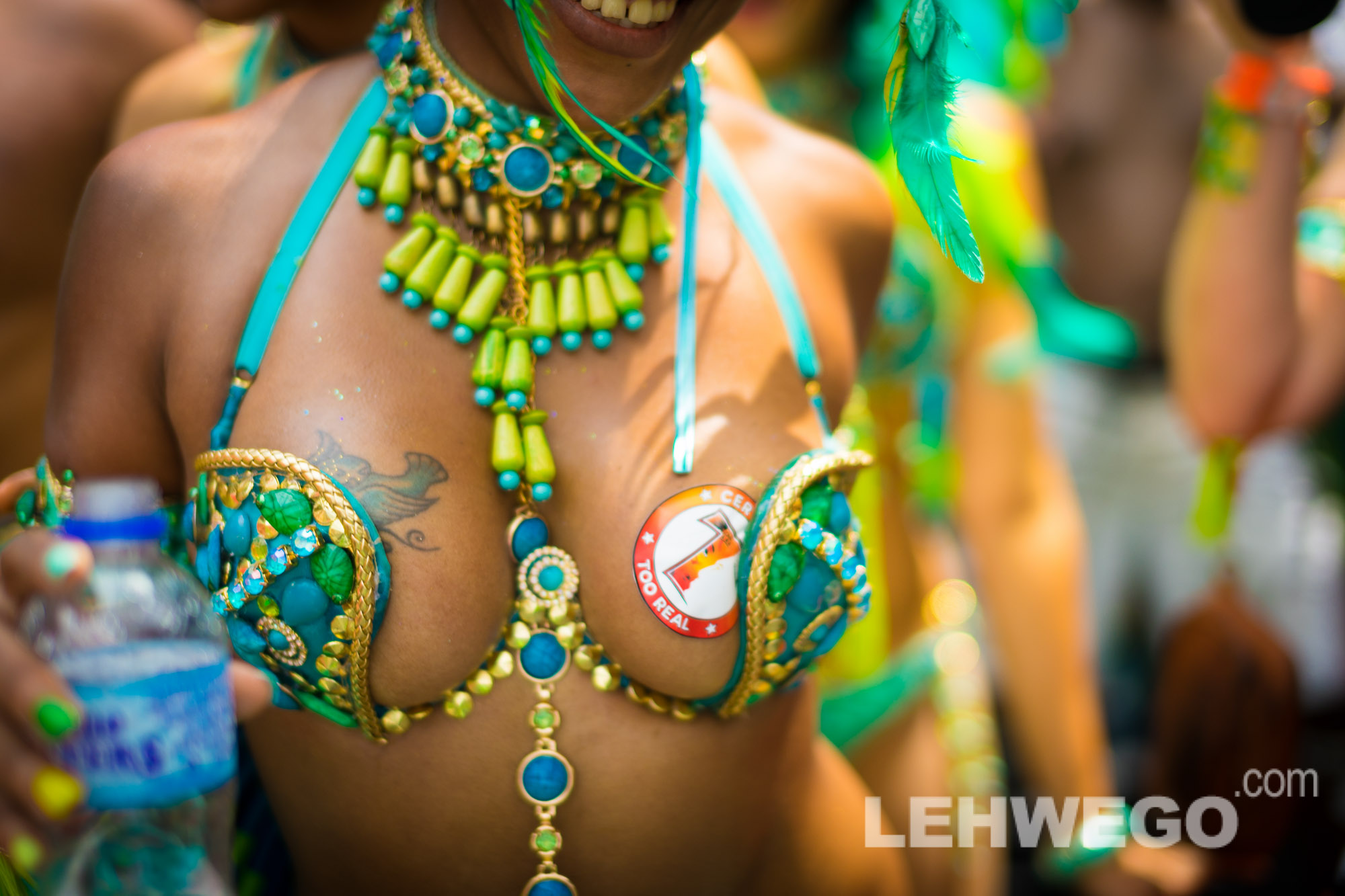 Trinidad carnival with Tribe 2014 review