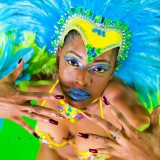 "Antigua Carnival 2014- Insane Mas ""Into the Wild"""