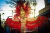 Trinidad Carnival 2015 with Fantasy, Blockbuster!