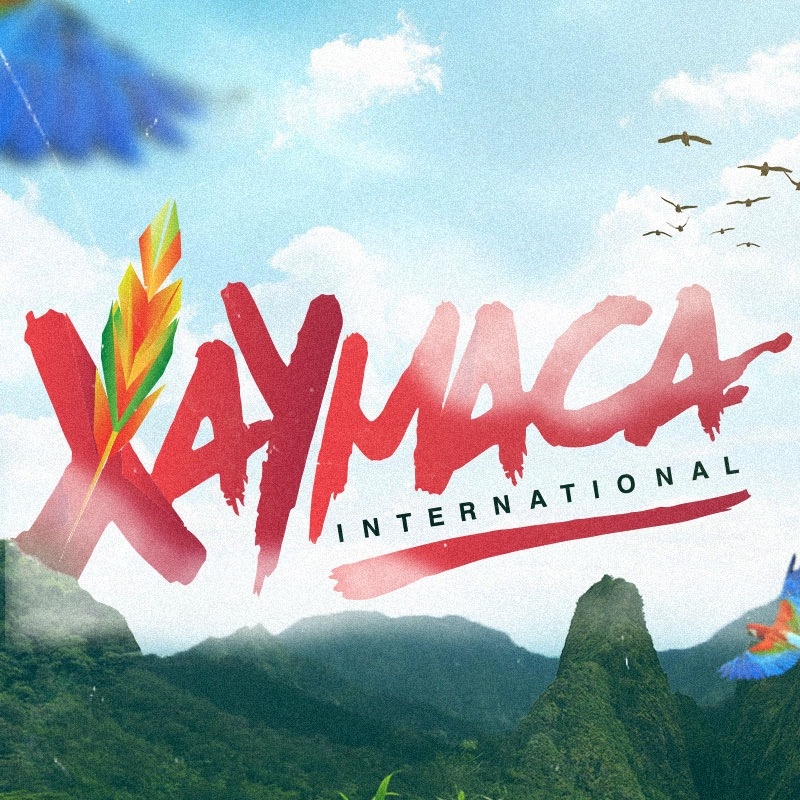 Image result for xaymaca carnival