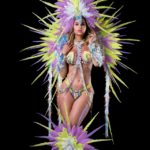Diodon-Section-leader-large-head-pc-backpack-feathered-legs-with-wire-bra-and-gem-bikini-option-1