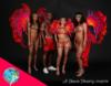 Miami Carnival Mas bands