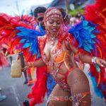 Trinidad carnival 2019 with ROGUE